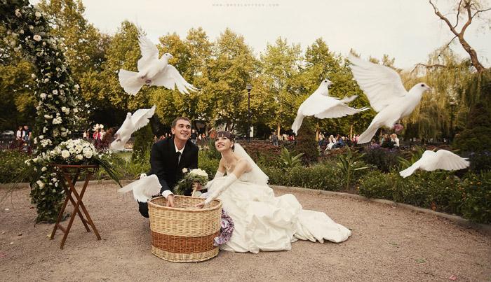 Красивая свадебная фотография жениха и невесты выпускающих белых голубей
